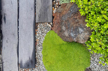 Native planting and stone mulch